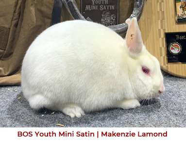 2019 Convention BOS Youth Mini Satin