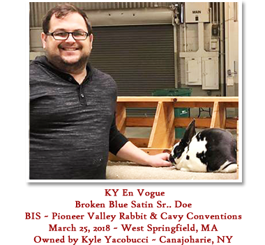 KY En Vogue - BIS Pioneer Valley Rabbit &, March 25, 2018, West Springfield, MA - Owned by Kyle Yacobucci, Canojoharie, NY